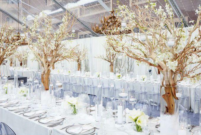 Temas de eventos incríveis: festa 15 anos all white