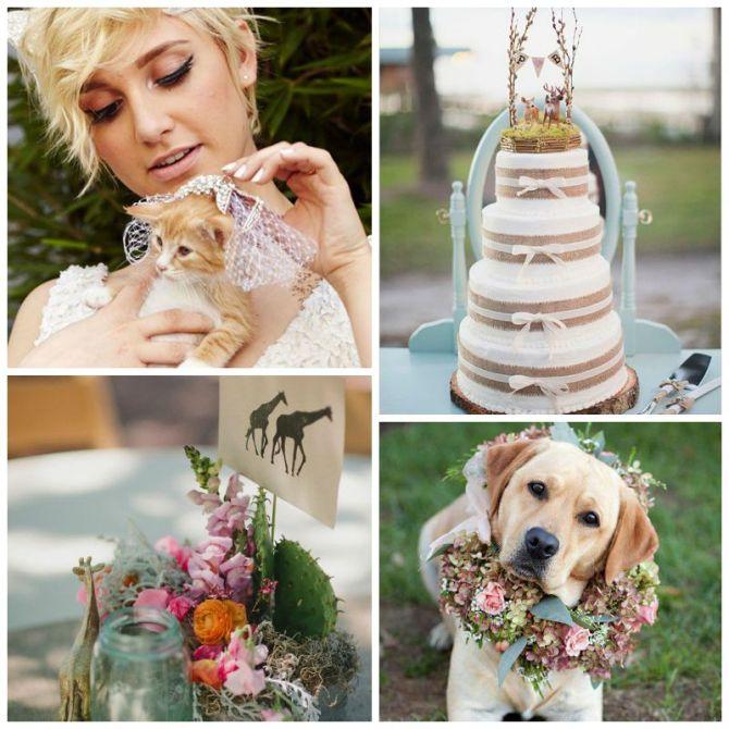 casamento-animais