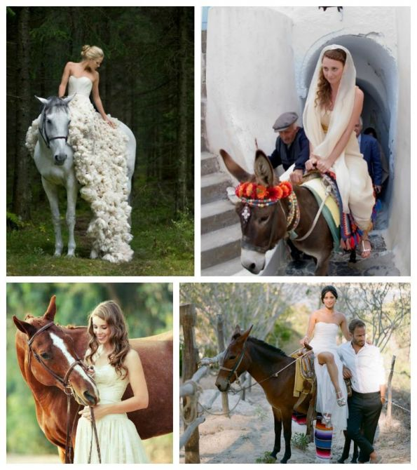 chegar-casamento-cavalo