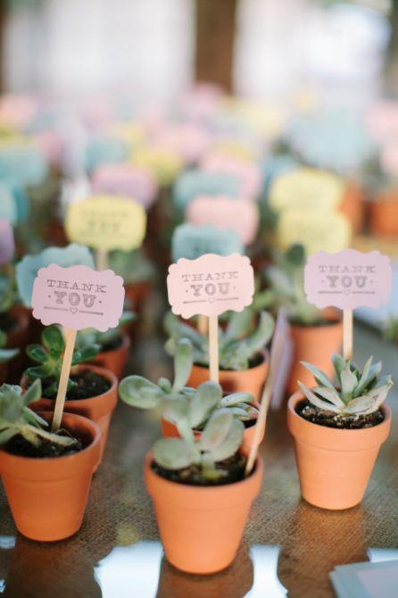 Plantinhas como Lembrança de Casamento